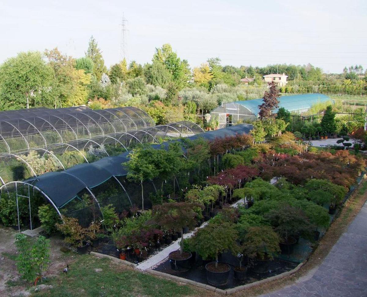 Dove dormire a Sacile: Agriturismo Acero Rosso - vivaio
